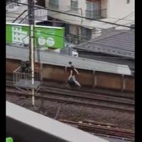 【路線立ち入り】東横線 中目黒駅で駅員に追われた男が線路内へ逃亡 !電車は運転見合わせ!「東横線止めてる自覚なさそうな感じで歩いてるじゃん…。」 【動画あり】