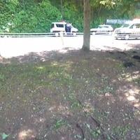 【土砂崩れ】東京 奥多摩町留浦の国道411号「土砂崩れに 巻き込まれたライダーが怪我!」「二度寝から起きたら凄い事になってる」
