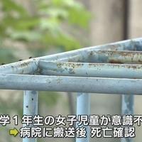 【事故】滋賀県大津市 児童公園で遊んでた女の子6歳がジャングルジム転落!意識不明のまま、病院に搬送されるも死亡!「子供の頃から思ってたけどジャングルジムって危なくね? 」