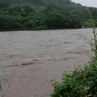 【氾濫】福岡県 うきは市を流れる筑後川が氾濫危険水位!「筑後川が濁流になって流木がどんどん流れてきてるこれはヤバいね」