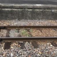 【人身事故】常磐線 東海~大甕駅間で人身事故発生!「また人身事故ってヤバすぎ🥺 みんな病んでるねぇ」